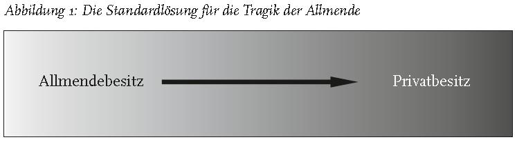 Die Tragik der Antiallende_abb1
